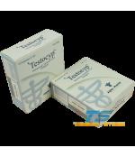 Alpha Pharma Testocyp (Testosterone Cypionate)